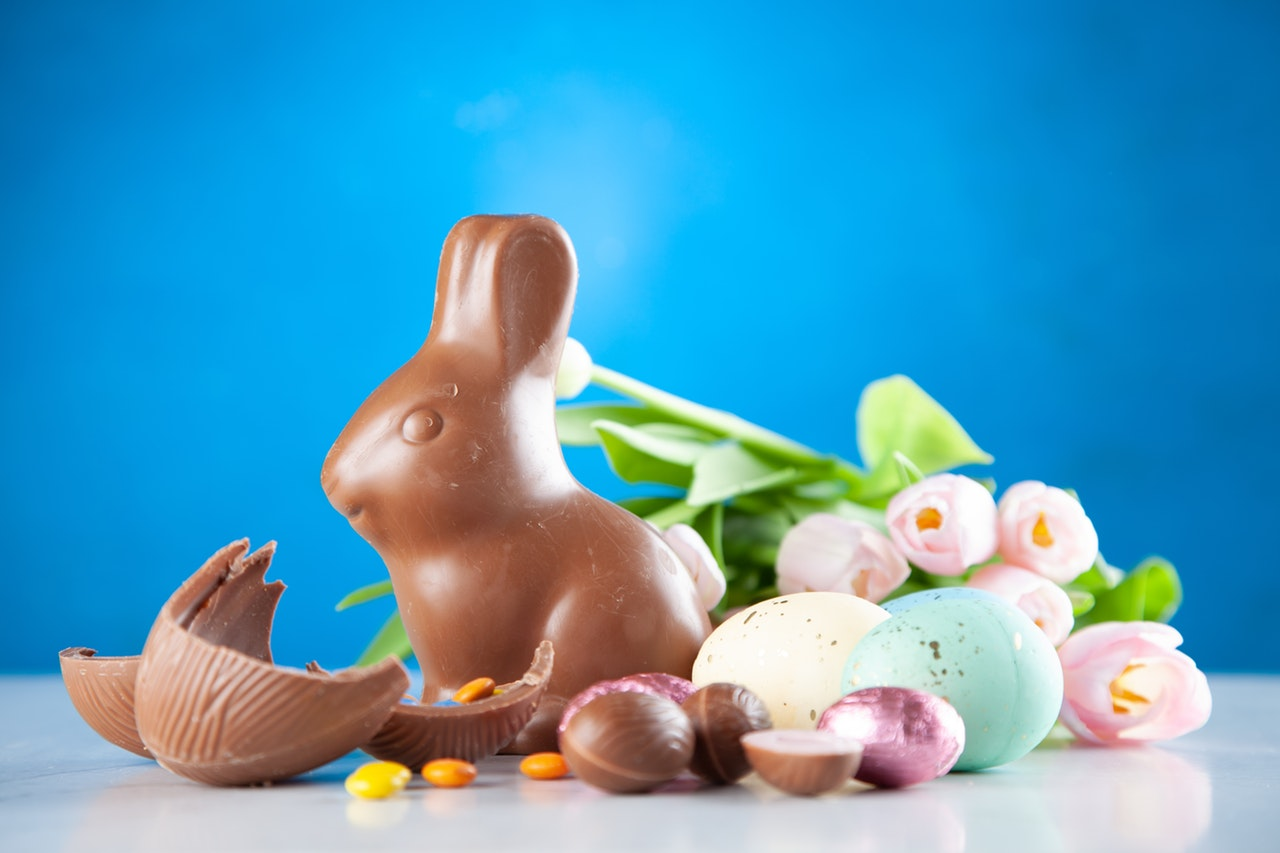 chocolate bunny next to colored eggs, chocoloate eggs infront of flowers and blue background