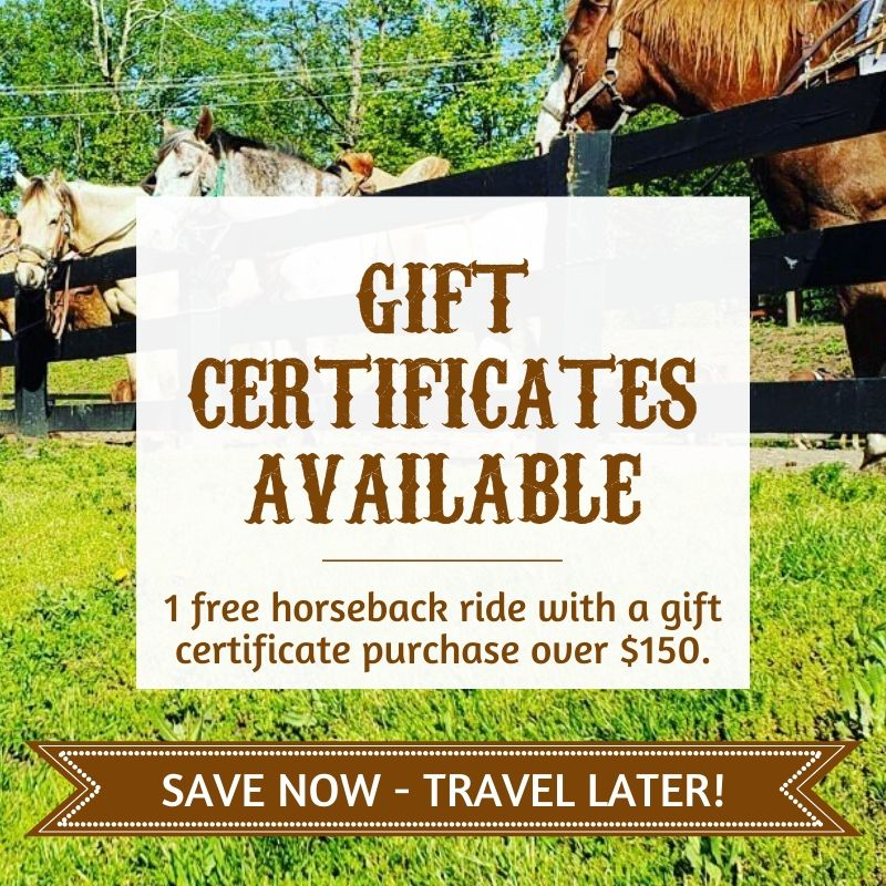 gift certificates available, 1 free horseback ride with a gift certificate purchase over $150