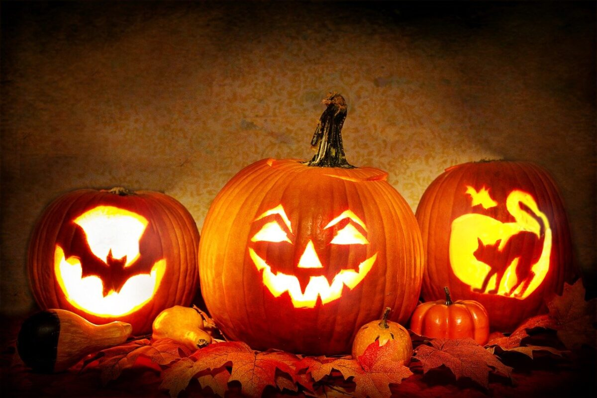 three carved pumpkins, face, bat, cat with glowing from inside